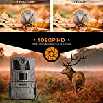 """WiMiUS Wildlife Camera 16MP 1080P HD Trail Game Camera with Night Vision Detection Motion Activated Wildlife Hunting Camera with 0.5s Trigger Speed 2.0"""" LCD IR LEDs"""