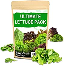 SavvyGrow Heirloom Lettuce Seeds (10 Varieties) - Survival Garden Seeds for Planting Include - Open Pollinated, 85% Plus Germination Rate, Non-GMO & Source in USA Vegetable Seed (Lettuce)