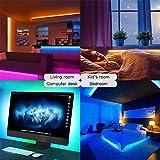 Zoom IMG-1 plartree striscia led 5m wifi