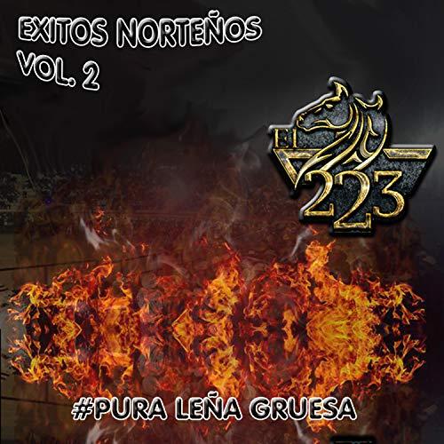 Exitos Norteños Vol.2