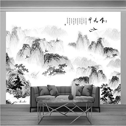 Fotomurales 400x350cm Tinta oriental en blanco y negro Papel pintado para pared efecto 3D tamaño XXL Fotomurales Vista 3D incluye baño Foto Mural Dormitorio Salon Fotomurales Pared