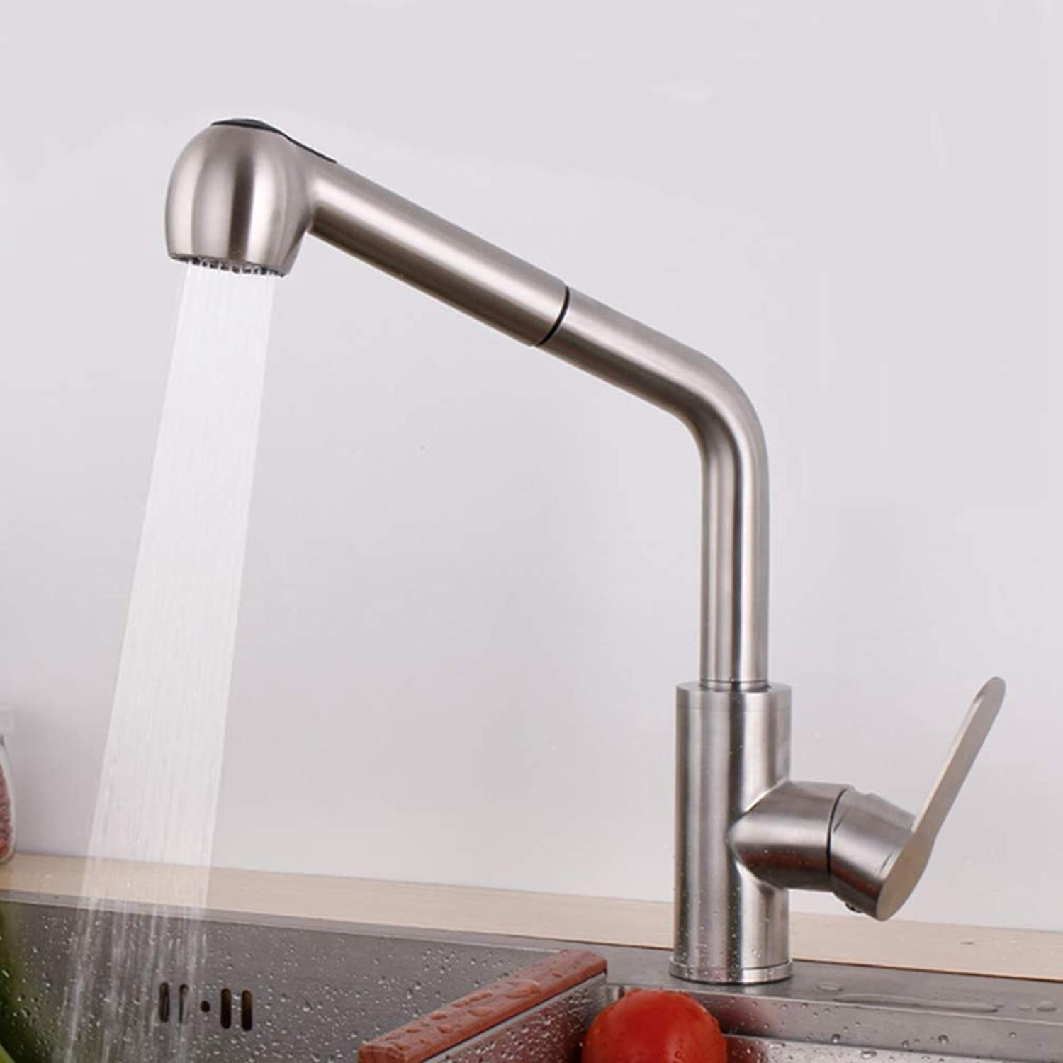 FZHLR Put Out Kitchen Faucet Mixer Tap 304 Stainless Steel Brushed Surface Hot and Cold Water Hand Holder Single Holder Single Hole Brushed