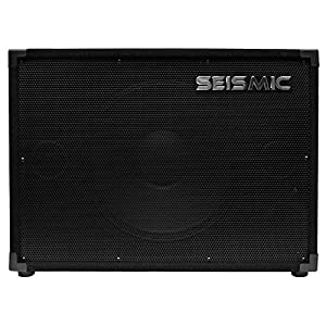 "Seismic Audio - 15"" Bass Guitar Speaker Cabinet 300 Watts RMS 115 Speakers 1x15"
