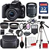 Canon EOS 250D / Rebel SL3 DSLR Camera with 18-55mm f/4-5.6 STM + Professional Accessory Bundle