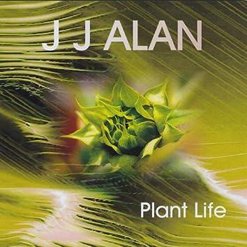 Plant Life