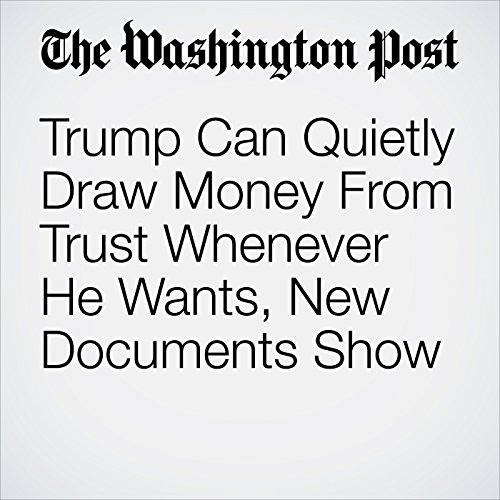 Trump Can Quietly Draw Money From Trust Whenever He Wants, New Documents Show copertina