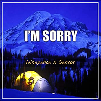 I'm Sorry (feat. Sensor)