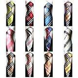 Weishang Lot 12 PCS Classic Men's 100% Silk Tie Necktie Woven JACQUARD Neck Ties(Style 5)