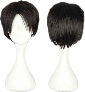 NiceLisa Top Quality Prestyled Short Black Brown Hairs mixed Boy Male Cosplay Costume Anime Wigs
