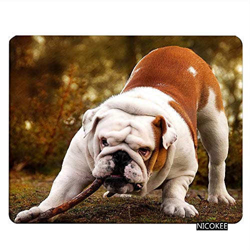 Nicokee Bulldog Gaming Mousepad Bulldog Biting A Branch Cute Dog Mouse Pad Mouse Mat for Computer Desk Laptop Office 9.5 X 7.9 Inch Non-Slip Rubber