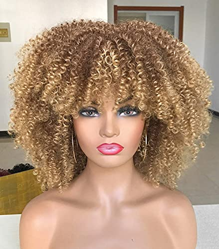 Curly Afro Wigs for Black Women Sho…