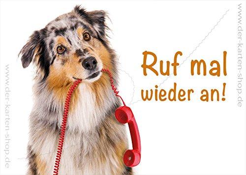A6 Dieransichtkaart, ansichtkaart, wenskaart, Ansichtkaart Hond