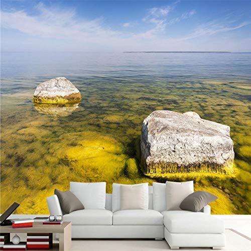 ZJfong benutzerdefinierte Tapeten auf der Oberfläche der zwei Bimsstein Sofa Schlafzimmer Wohnzimmer TV Hintergrundwand-330x210cm