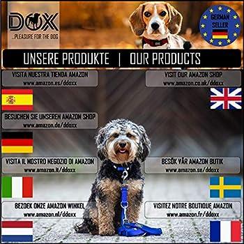 DDOXX Laisse Chien Enrouleur, Réfléchissante   Nombreuses Couleurs & Tailles   pour Petit, Moyen Gros & Grand   Laisses rétractable Chat Chiot   XS, 3 m, à 8 kg, Noir/Jaune Neon