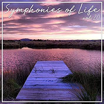 Symphonies of Life, Vol. 20 - The Symphonies Nos 1