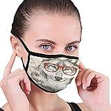 Mascarillas faciales lavables de carbón activado por el Reino Unido, divertido boceto de lobo con gafas y ser inteligente, decoraciones faciales impresas para adultos unisex