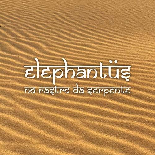 Elephantus