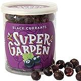 Super Garden grosella negra liofilizada - Snack saludable - Producto 100% puro y natural - Apto para veganos - Sin azúcares, aditivos artificiales ni conservantes añadidos - Sin gluten - No OMG