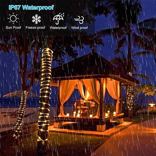 Solar Rope Lights Outdoor,Solar String Lights,Clear Tube LED Rope Light,Contain 2 Pack 65.6Ft 200 LED Light,Waterproof Solar Fairy Lights for Garden,Fence,Yard,Party,Valentine's Day Decoration