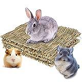 Mascotas Alfombrilla De Hierba, 3 Piezas Alfombrilla De Hierba para Conejo, Estera De La Hierba del Hámster, para Loro, Chinchilla, Ardilla, Hámster, y Animal Pequeño (11 * 7,9 Pulgadas)