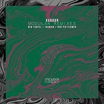 Modular Remixes