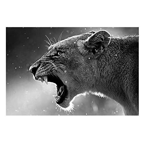 MULMF Leinwand Malerei Home Decor 1 Stück Brüllender Leopard Poster Drucke Tier Löwe Bilder Für Wohnzimmer Wandkunst- 50X70Cm Ohne Rahmen