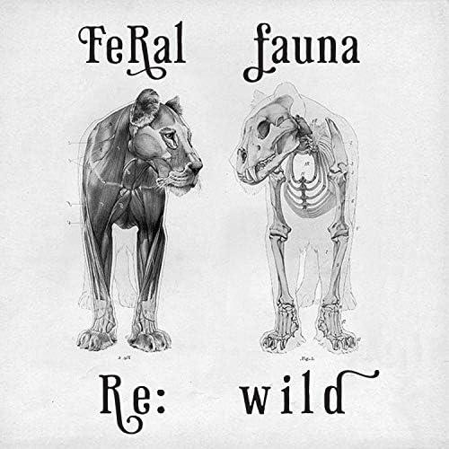 Feral Fauna, KR3TURE & Heather Christie