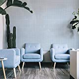 """Ansehan Wallcovering W607 Metallic Dash Line Collection Paper Weave Grasscloth 3D Texture Wallcovering for Home Living Room Bedroom Indoor Wall, 36"""" W x 8 Yard L, Metallic Blue/Pearl/Natural Knit"""