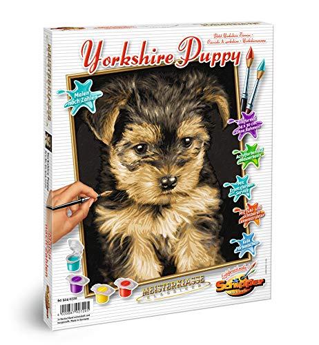 Schipper 609240720 Malen nach Zahlen, Yorkshire Puppy - Bilder malen für Erwachsene, inklusive Pinsel und Acrylfarben, 24 x 30 cm