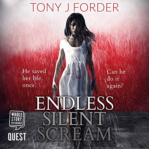 Endless Silent Scream  By  cover art