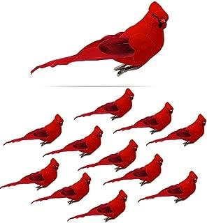 Best cardinal tree ornaments Reviews