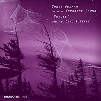 Voices (feat. Terrance Downs)