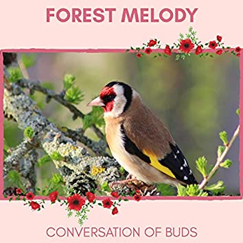 Forest Melody - Conversation of Buds
