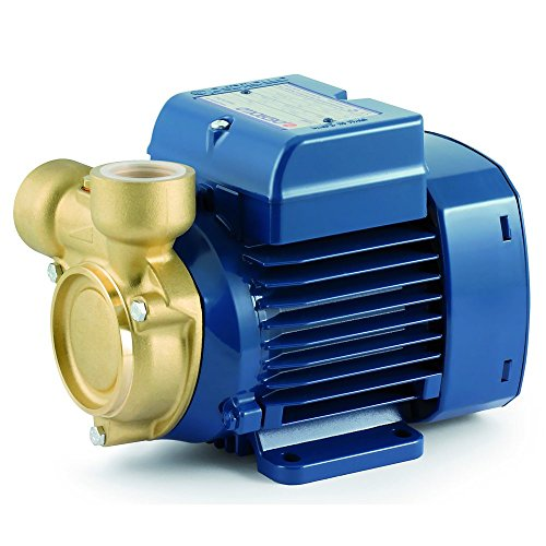 Electric Peripheral Water Pump PQ 81-Bs 0,7Hp Brass body impeller 400V Pedrollo 🔥