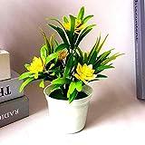 Whbage Flor seca 1 pieza Flores artificiales en macetas, flor de loto, para decoración de escritorio de plástico