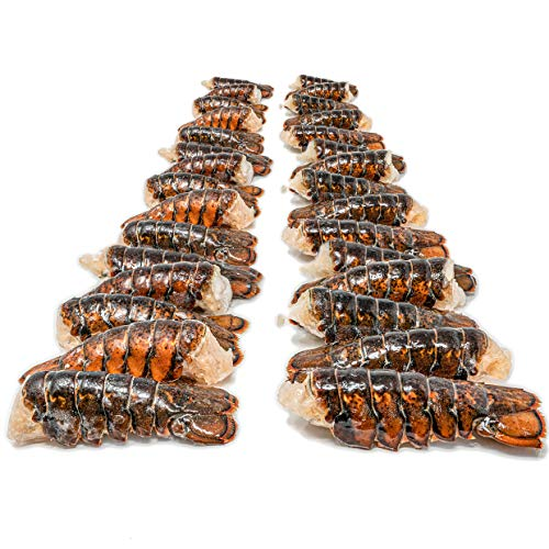 (10 Pack) Fresh Frozen Lobster Tails from Maine - Best with Lobster Clasp, Crab Leg Cracker Tools, Lobster Pics, Seafood Scissor & Forks - Antibiotic Free - Get Maine Lobster