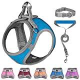 Small Dog Harness,Dog Collars,Harnesses & Leashes,Step in Dog Harness, Comfortable and Reflective Dog Vest Harness for Small Medium Puppy, Blue S