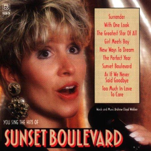 You Sing The Hits Of Sunset Boulevard [KARAOKE]