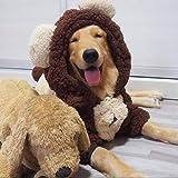QKEMM Perro Capucha Mascota Cálido Abrigo de Ropa Ropa de Fiesta Samoyedo para Mascotas de Animales Fronterizos Mascotas Abrigo de Invierno Super Cálido y Cómodo Marrón 8XL