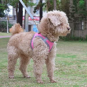 Small Dog Harness, Puppy Harness, Soft Dog Harness and Leash Set with a Reflective Collar for Small Dogs,Comfortable and Reflective Dog Vest Harness, Pink X-Small
