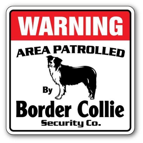 Funny décoratifs Signes Border Collie Sécurité Sign Zone Patrolled pour animal domestique Herding Chien vétérinaire Lover Animal Pancarte en métal en aluminium Sign pour garage, salon