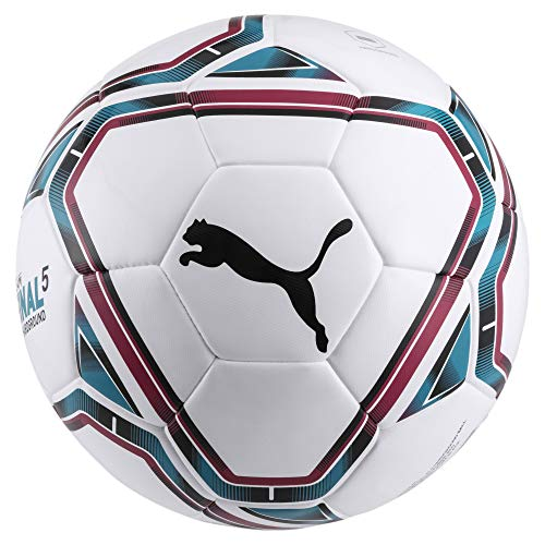 Puma 83481 TPU Football, Size 5 (White)
