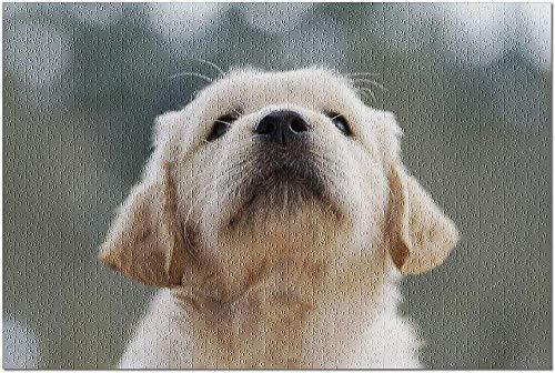 ZFSXmas Puzzle in Legno per Adulti e Bambini Ritratto di Un Cucciolo di Golden Retriever FacciadaCuccioloGioco Fai da Te Regalo Antistress per Bambini (1000 Pezzi)