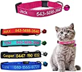 Brillianne Collare Personalizzato per Gatti Breakaway...