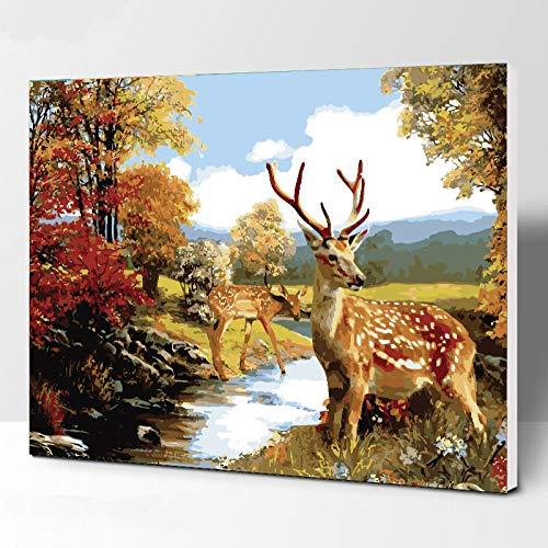 JieXi Mi binbin un Deer Animals DIY malen nach Zahlen Acrylbild wandkunst leinwand malerei wohnkultur einzigartiges Geschenk Kunstwerk 40x50cm-Kein Rahmen