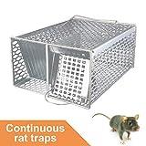 ROCKBIRDS Mouse Trap -...