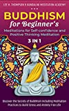 Buddhism for Beginner's, Meditations for Self-confidence and Positive Thinking Meditation: 3 in 1: Discover the Secrets of Buddhism Including Meditation ... and Anxiety Free Life (English Edition)