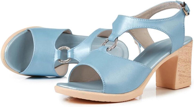 DANDANJIE Womens Sandals Summer High Heels Block Heel shoes Comfort Open Toe Buckle Outdoor shoes for Ladies 35-40