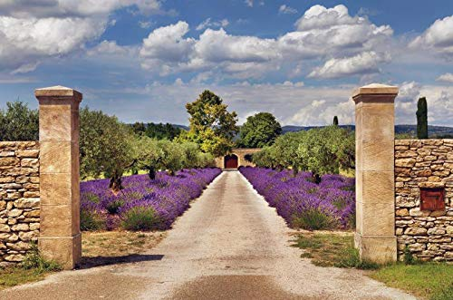 Baocicco 12x10ft Vinyl Backdrop Romantic Lavender Path in Provence Photography Background Stone Wall Purple Lavender Sea Arched Door Long Deep Path Wedding Valentine's Day Girls Lover Couple Portrait