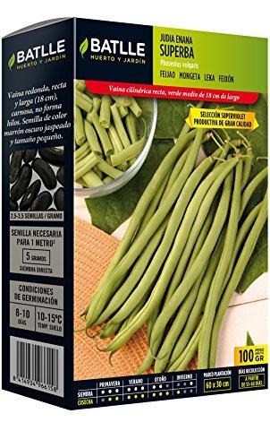 Batlle Graines de Légumes - Nain Superba Ausw. Superviolet (100 g).